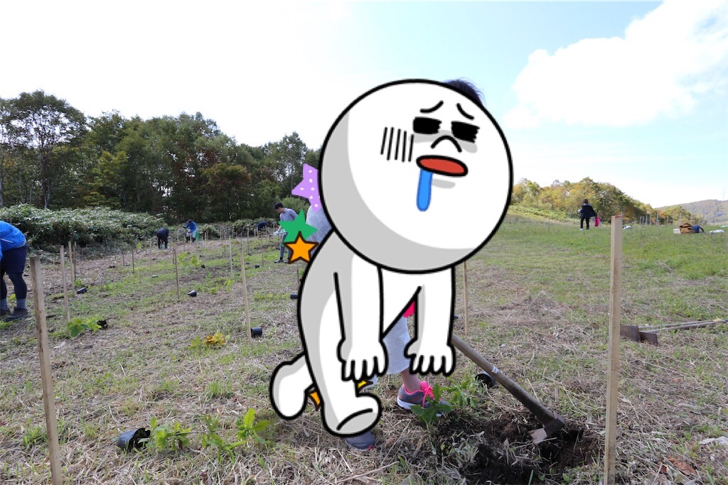 f:id:shitamachi-dog:20171107074110j:image