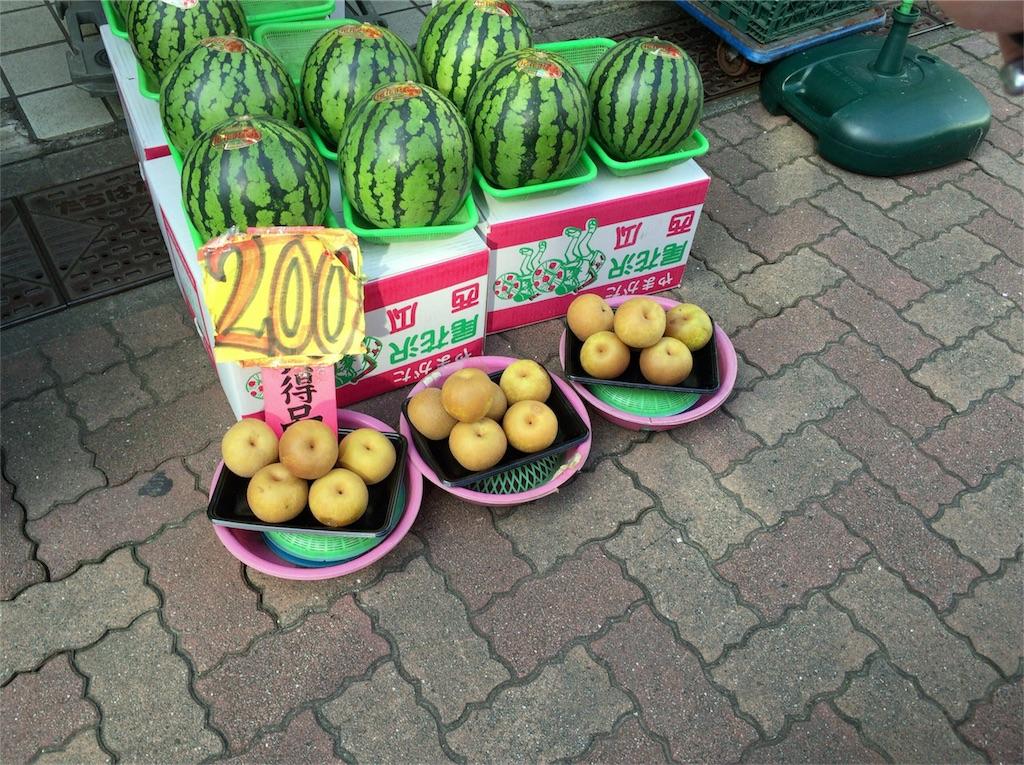 f:id:shitamachi-dog:20171228131535j:image