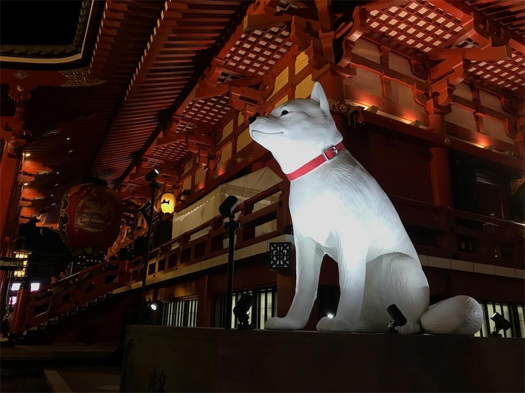 f:id:shitamachi-dog:20180102003226j:image