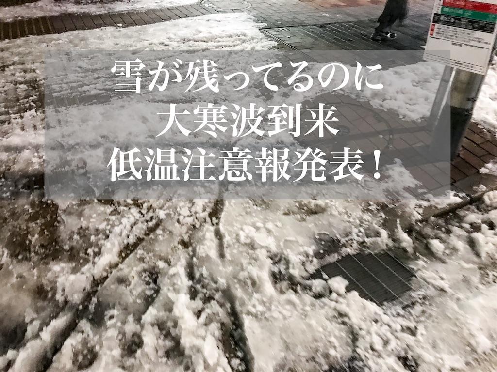 f:id:shitamachi-dog:20180124192922j:image