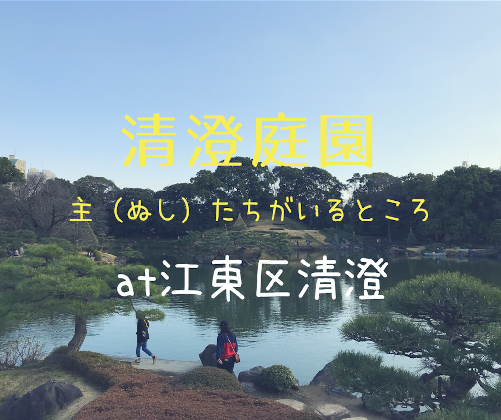 f:id:shitamachi-dog:20180407011644p:image