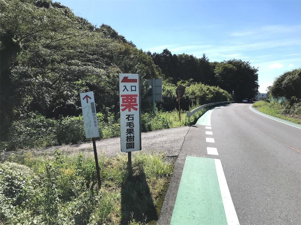 f:id:shitamachi-dog:20180910233232j:image