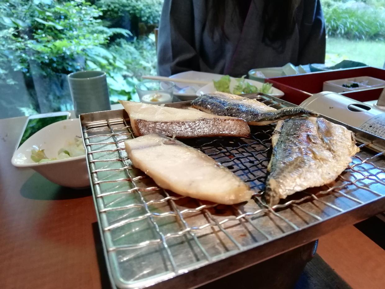 お魚の干物