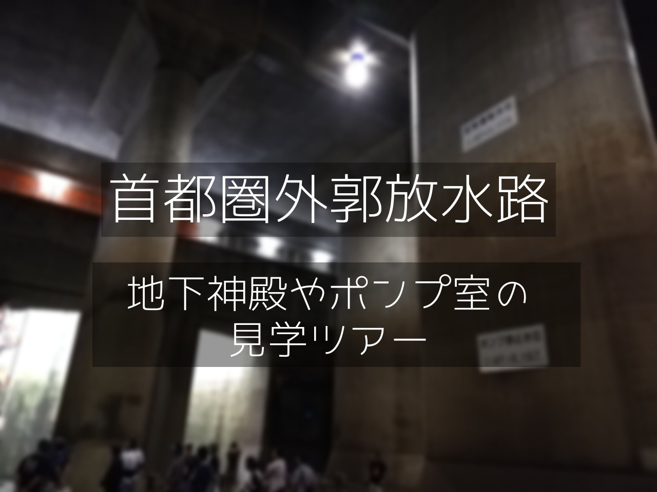 f:id:shitamachi-dog:20190922004524j:image
