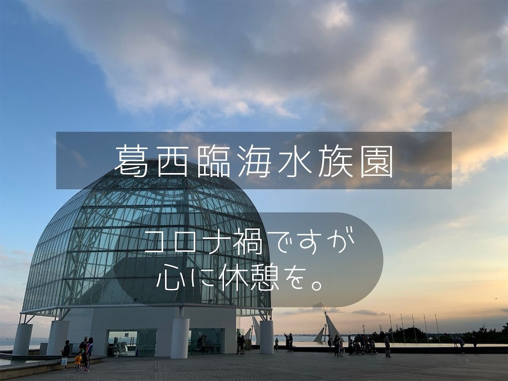 f:id:shitamachi-dog:20201011100128j:image