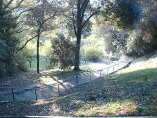 近くの公園1