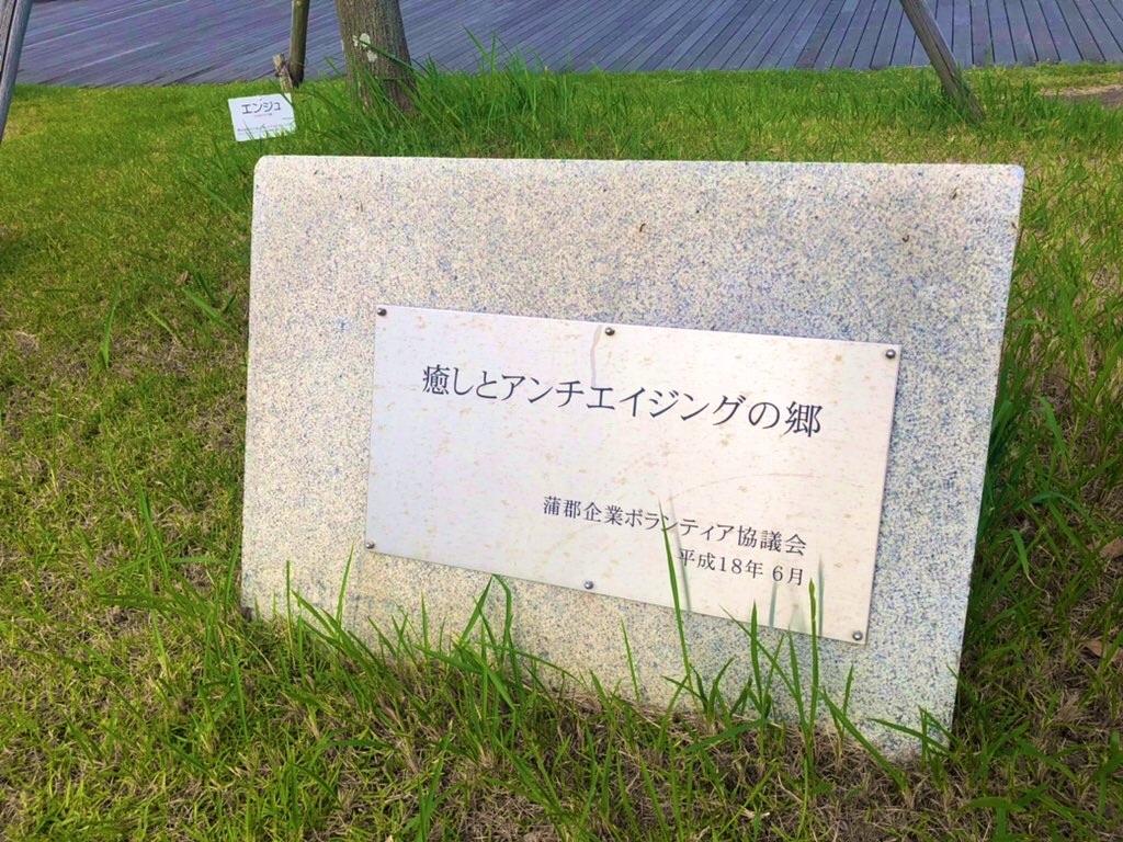 f:id:shiwa_shiwa:20210613192445j:image