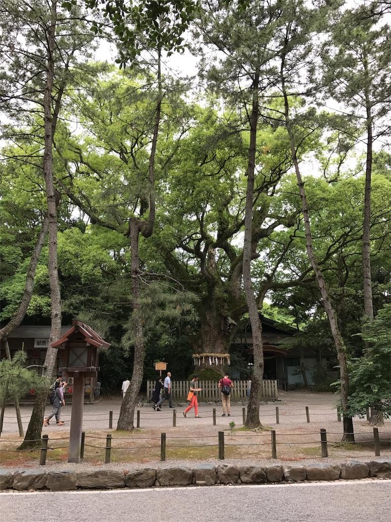 f:id:shiyotsukaki:20170601155608j:image