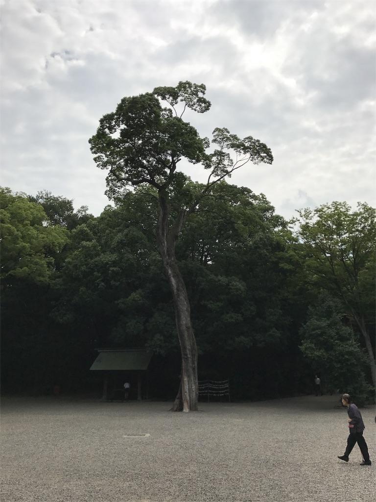 f:id:shiyotsukaki:20170801200000j:image