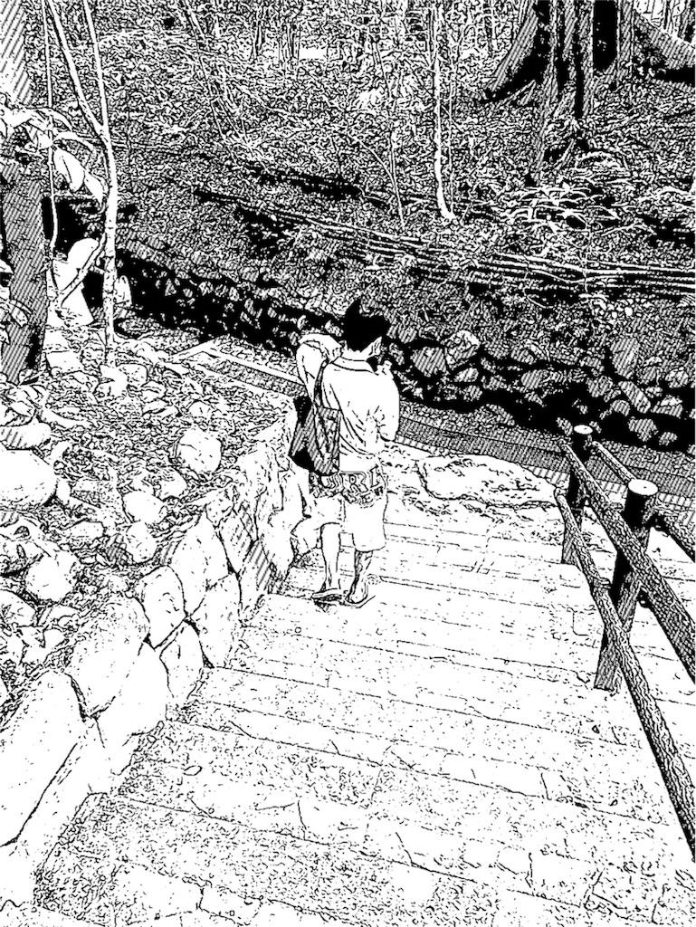 f:id:shiyotsukaki:20170801200937j:image