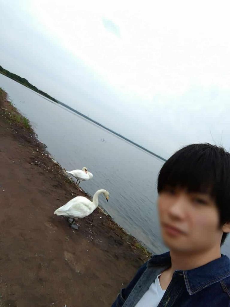 f:id:shiyuu_you:20170905182030j:plain