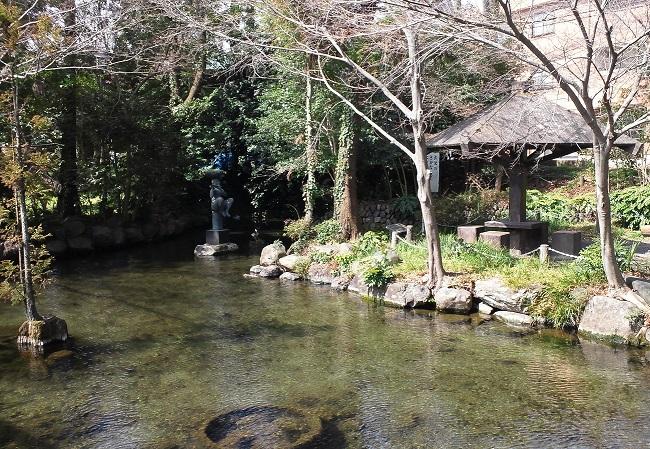 f:id:shizengaku:20170409211914j:image:w300