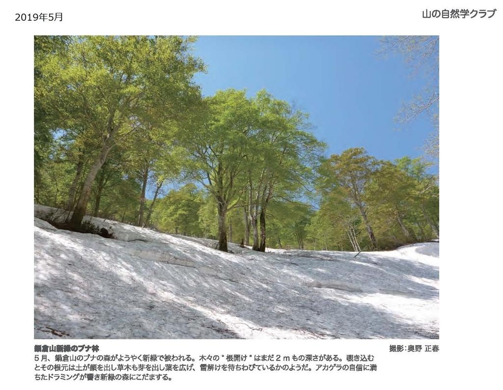 f:id:shizengaku:20190227171925j:plain