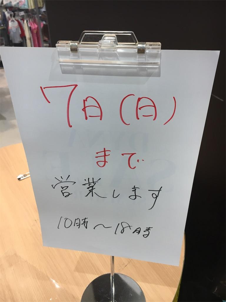 f:id:shizengasuki:20190706223935j:image