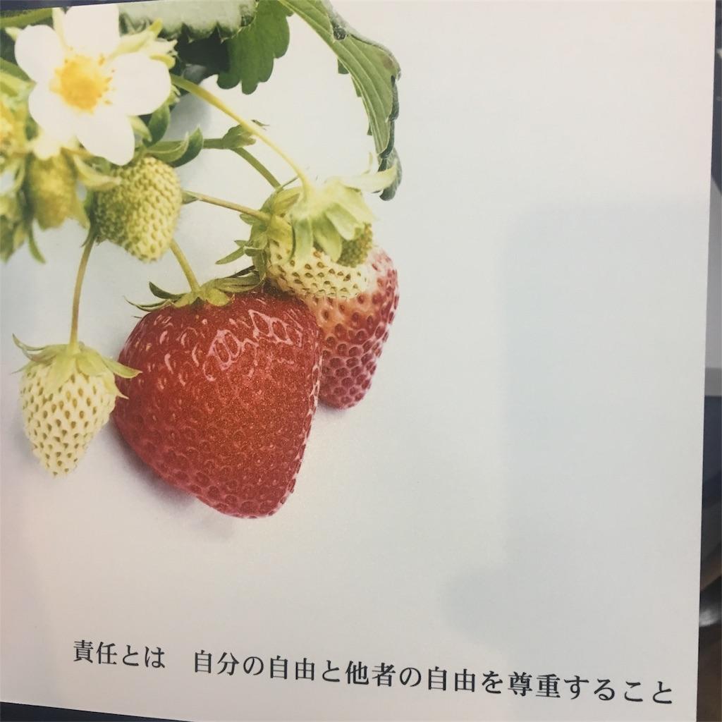 f:id:shizenhamamaama:20170515192934j:image