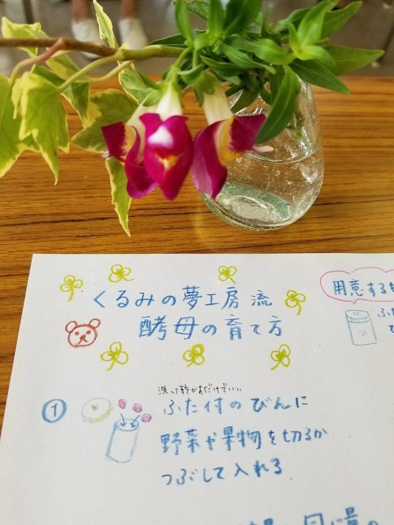 f:id:shizenhamamaama:20180911235515j:plain