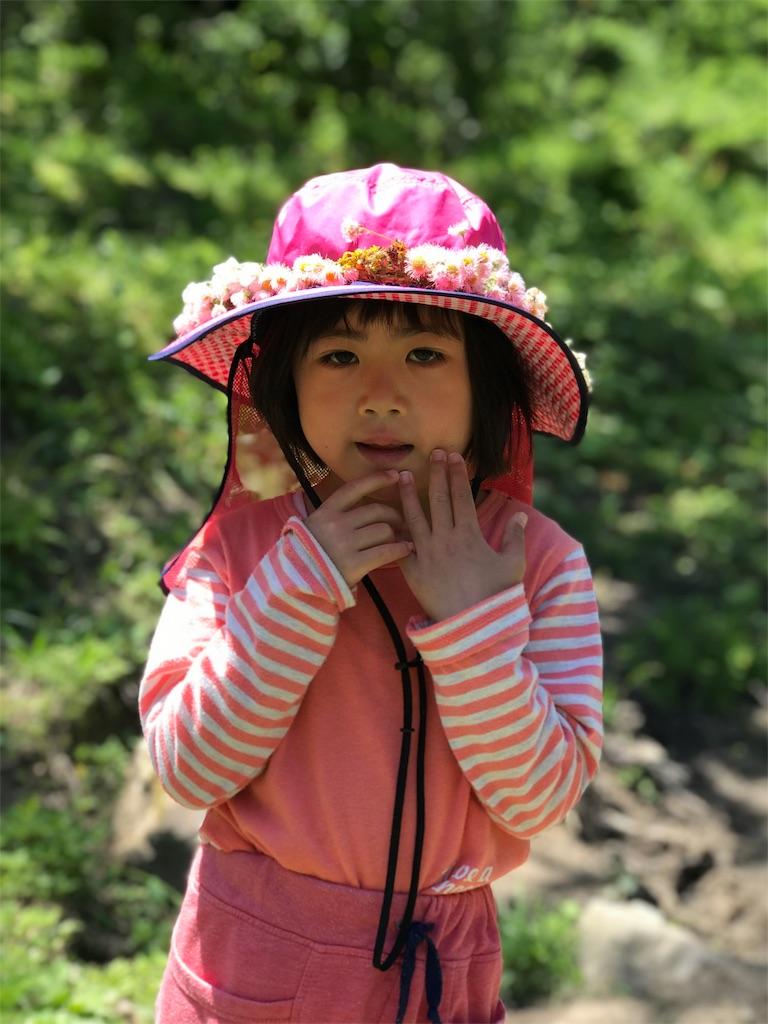 f:id:shizenhoikunoppara:20180531091910j:image