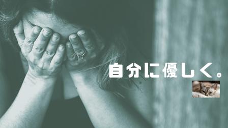 f:id:shizennichi-zero:20181230084459p:plain