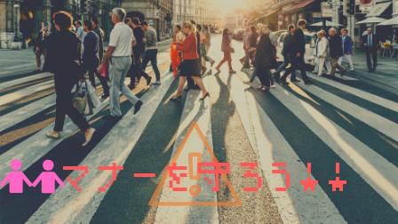 f:id:shizennichi-zero:20190103202310p:plain