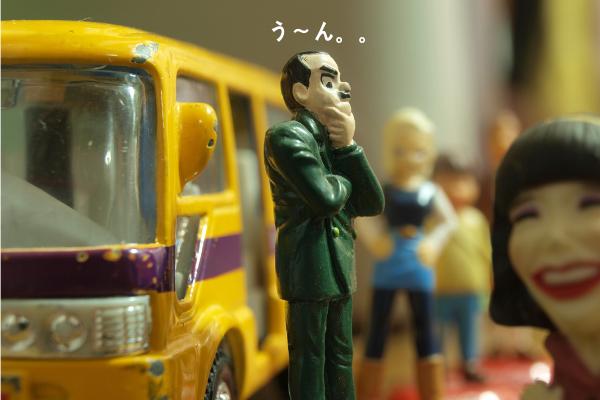 f:id:shizennichi-zero:20190212181116p:plain