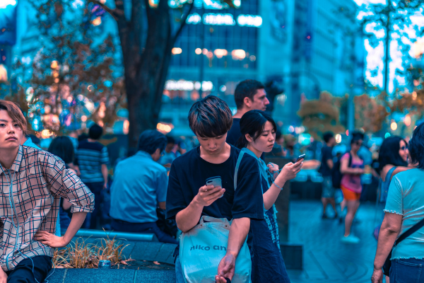 f:id:shizennichi-zero:20190805192538p:plain