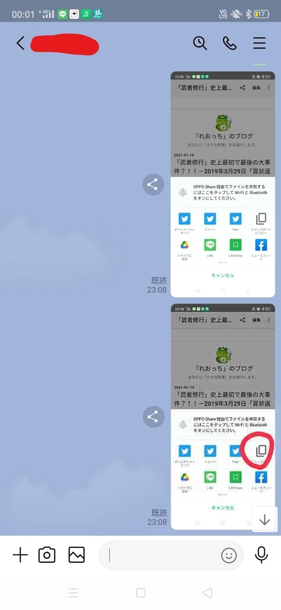 f:id:shizhonglingyang:20210116105035j:plain