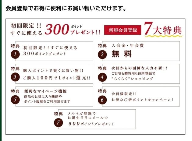 f:id:shizu3434:20190123142058j:plain
