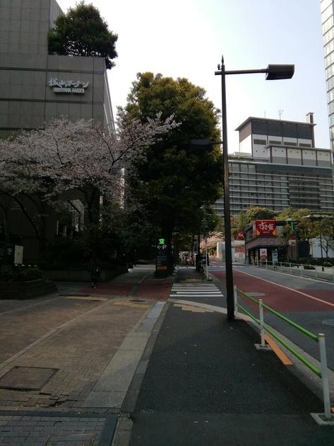 f:id:shizu3434:20190410222627j:plain