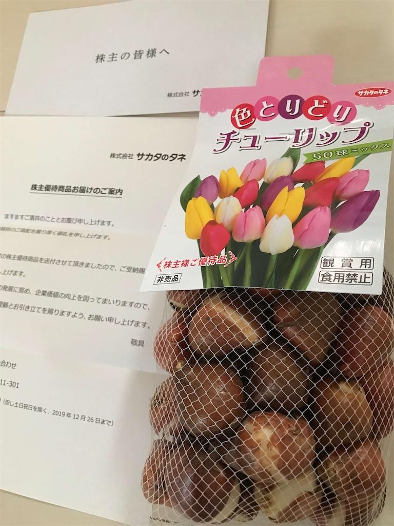 f:id:shizukabu:20200222235346j:image