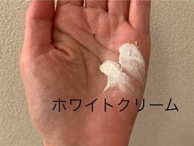 f:id:shizukaraku:20210828200423j:plain