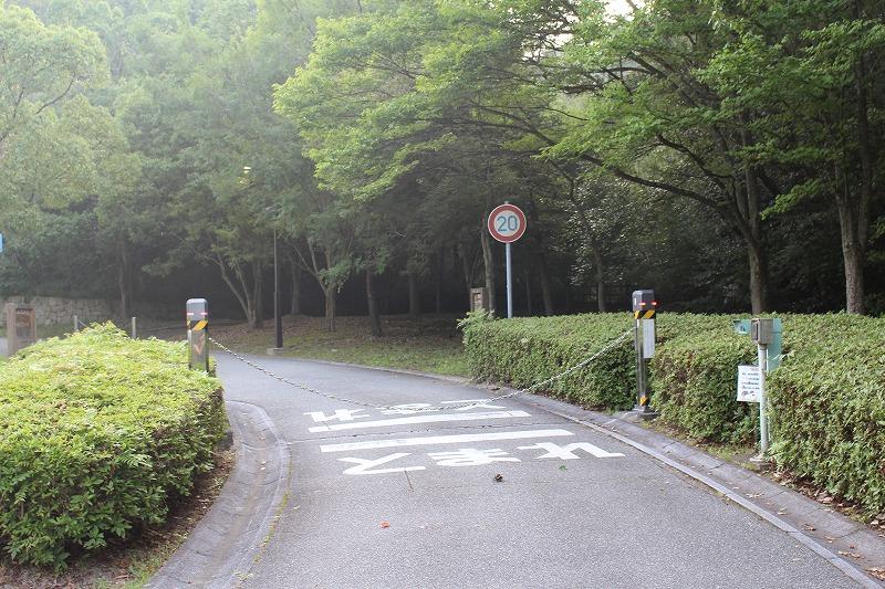 f:id:shizuku9:20190805142356j:plain