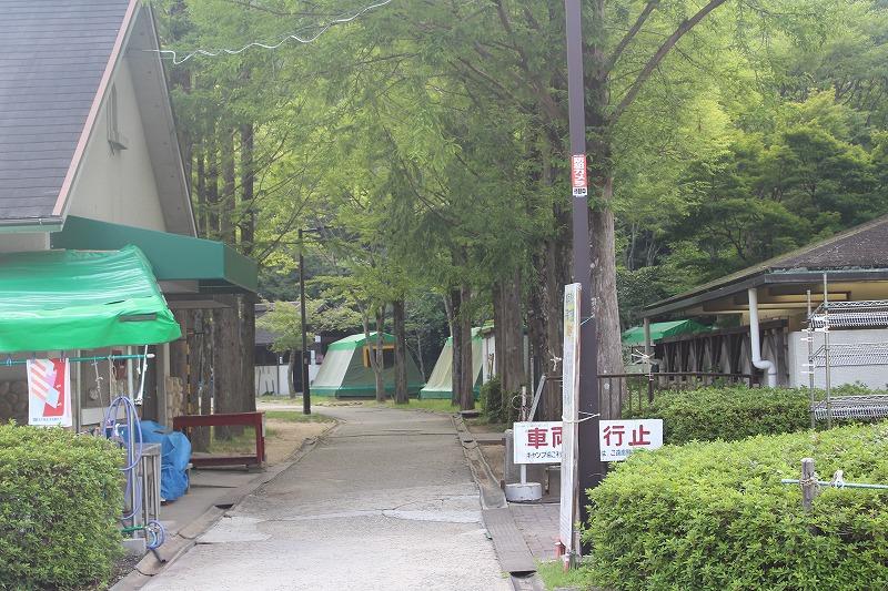 f:id:shizuku9:20190806103225j:plain