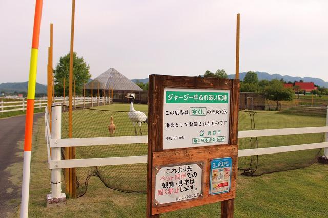 f:id:shizuku9:20200604135855j:plain