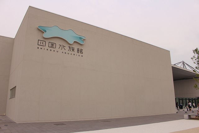 f:id:shizuku9:20200608133315j:plain