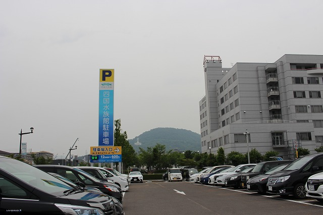 f:id:shizuku9:20200608133813j:plain