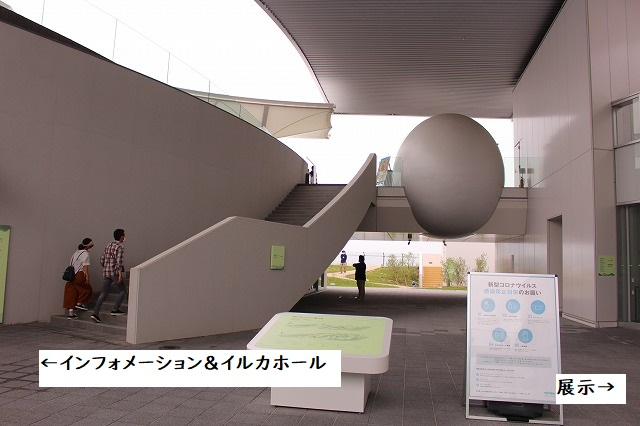 f:id:shizuku9:20200608135646j:plain