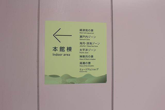 f:id:shizuku9:20200608135858j:plain