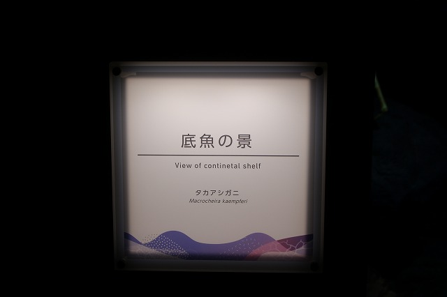 f:id:shizuku9:20200608140759j:plain
