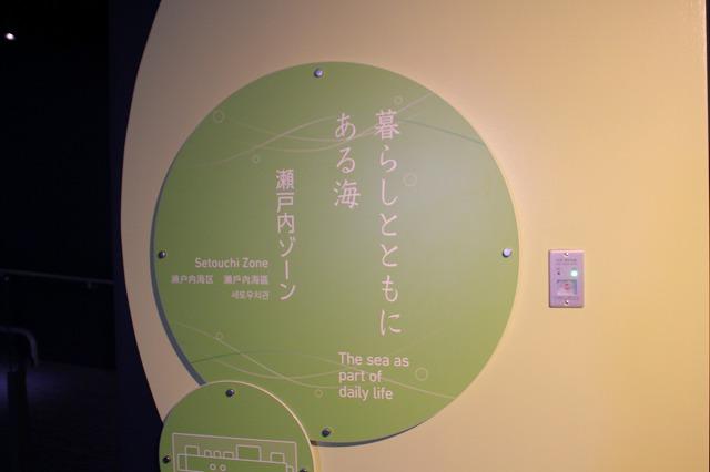 f:id:shizuku9:20200608141705j:plain