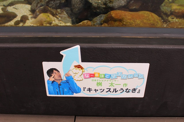 f:id:shizuku9:20200608144545j:plain