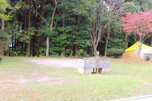 f:id:shizuku9:20201104093017j:plain