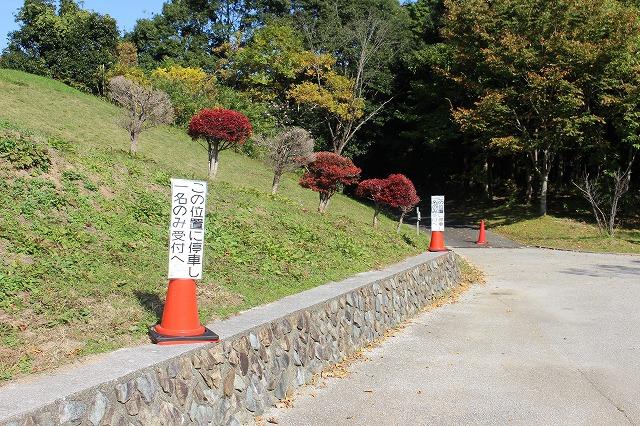 f:id:shizuku9:20201104113655j:plain