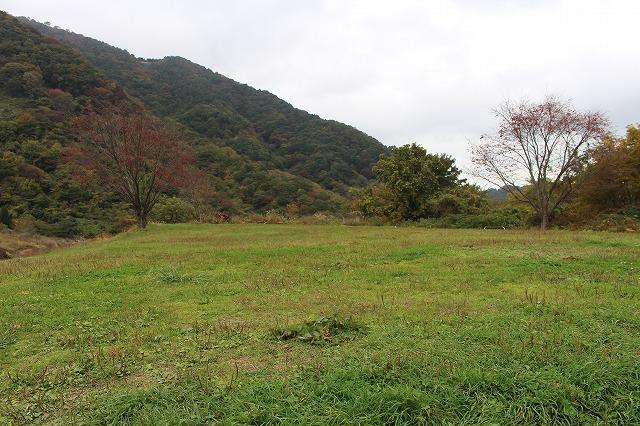 f:id:shizuku9:20201104143407j:plain