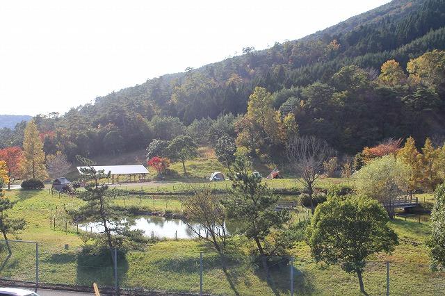 f:id:shizuku9:20201104143427j:plain