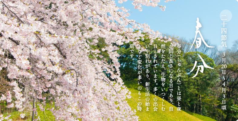 明日21日は春分の日!彼岸の中日...