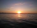 [琵琶湖] 20121104 琵琶湖湖西&南湖 43cm