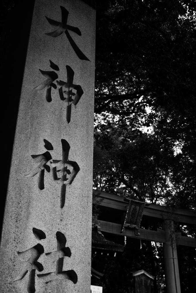 f:id:sho_ishi:20170102163117j:plain