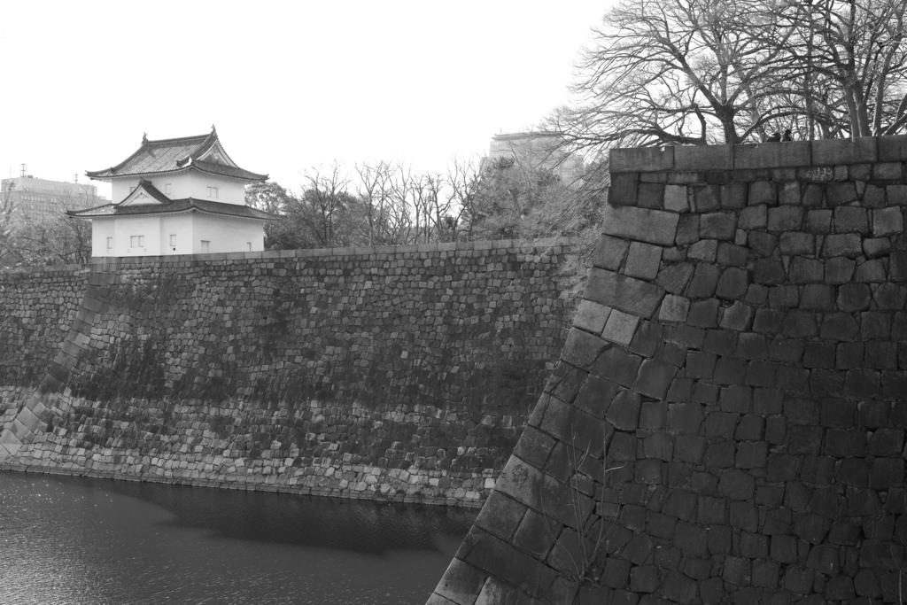 f:id:sho_ishi:20170219143306j:plain