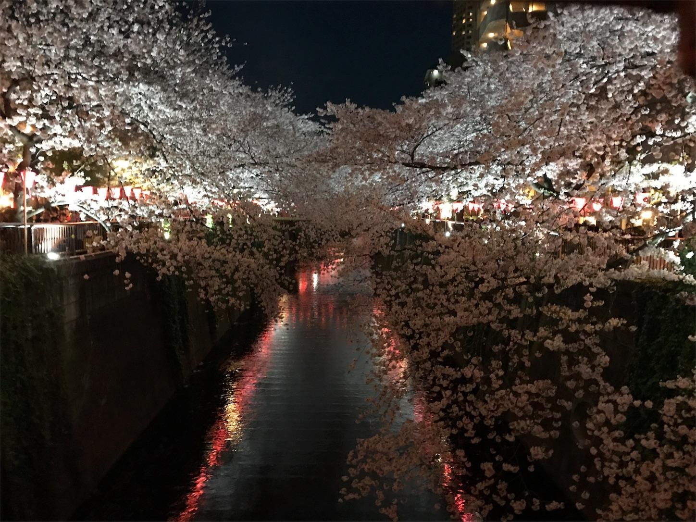 f:id:sho_ishi:20170407233159j:image