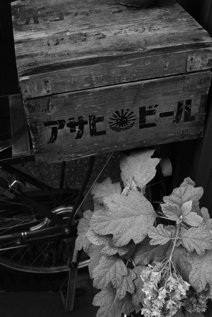 f:id:sho_ishi:20170722175544j:plain